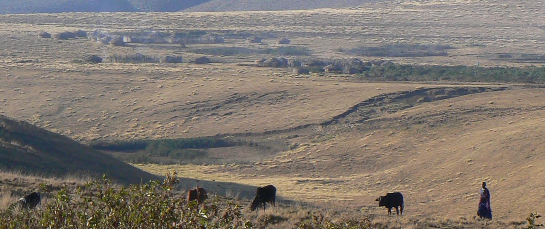 Masai dorp in Ngorongoro