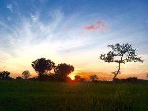 Sunset at Pangani