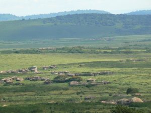 Nainokanoka Ngorongoro