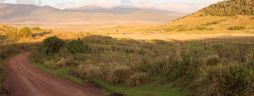 Ngorongoro Tanzania - foto Servan Ott