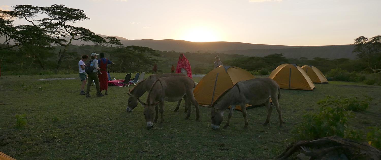 Akesha Campsite Ngorongoro