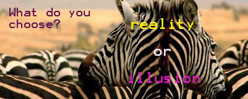 reality or illusion