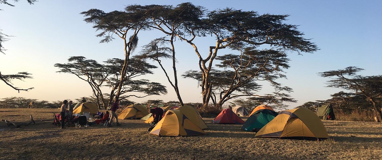 Bushkamp mindfulness Tanzania