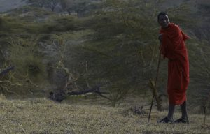 Daniel Olekombeti - Masai Guide Ngorongoro