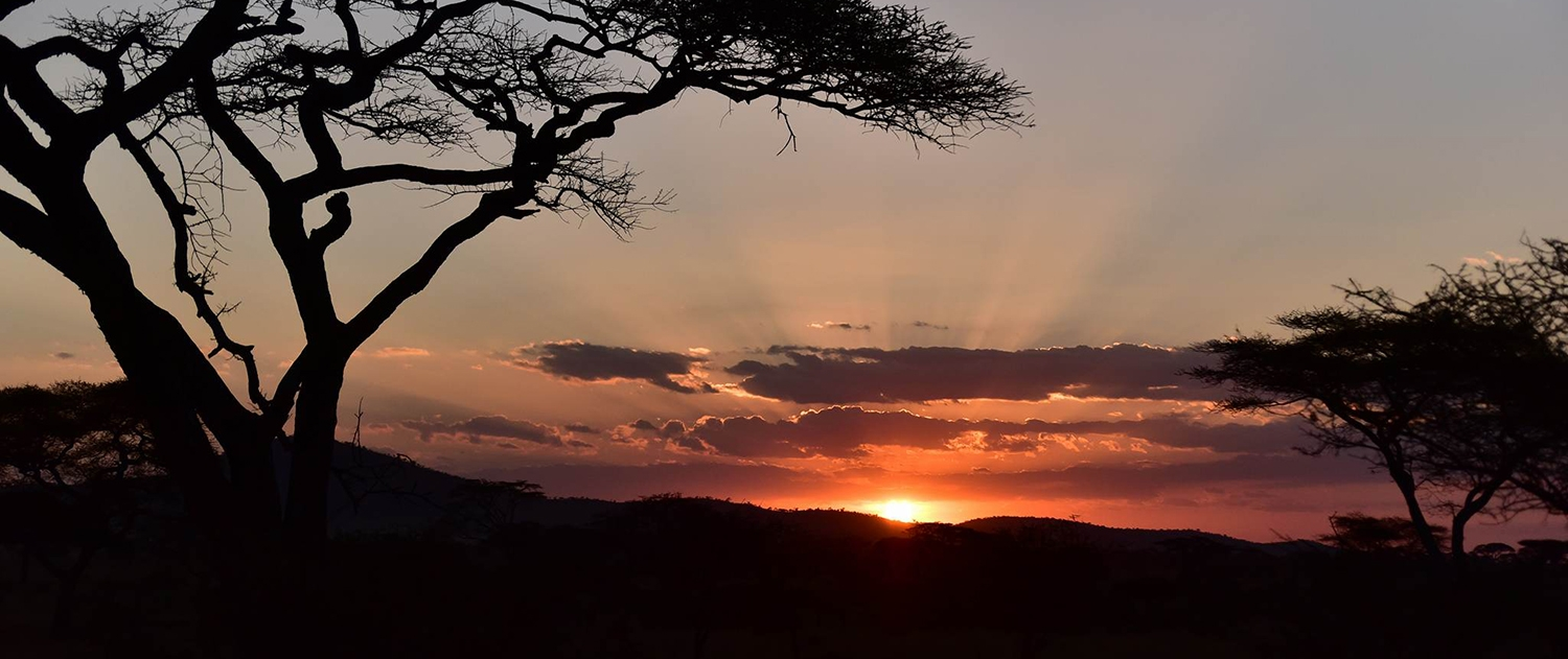 Mindful Adventure zonsondergang Serengeti