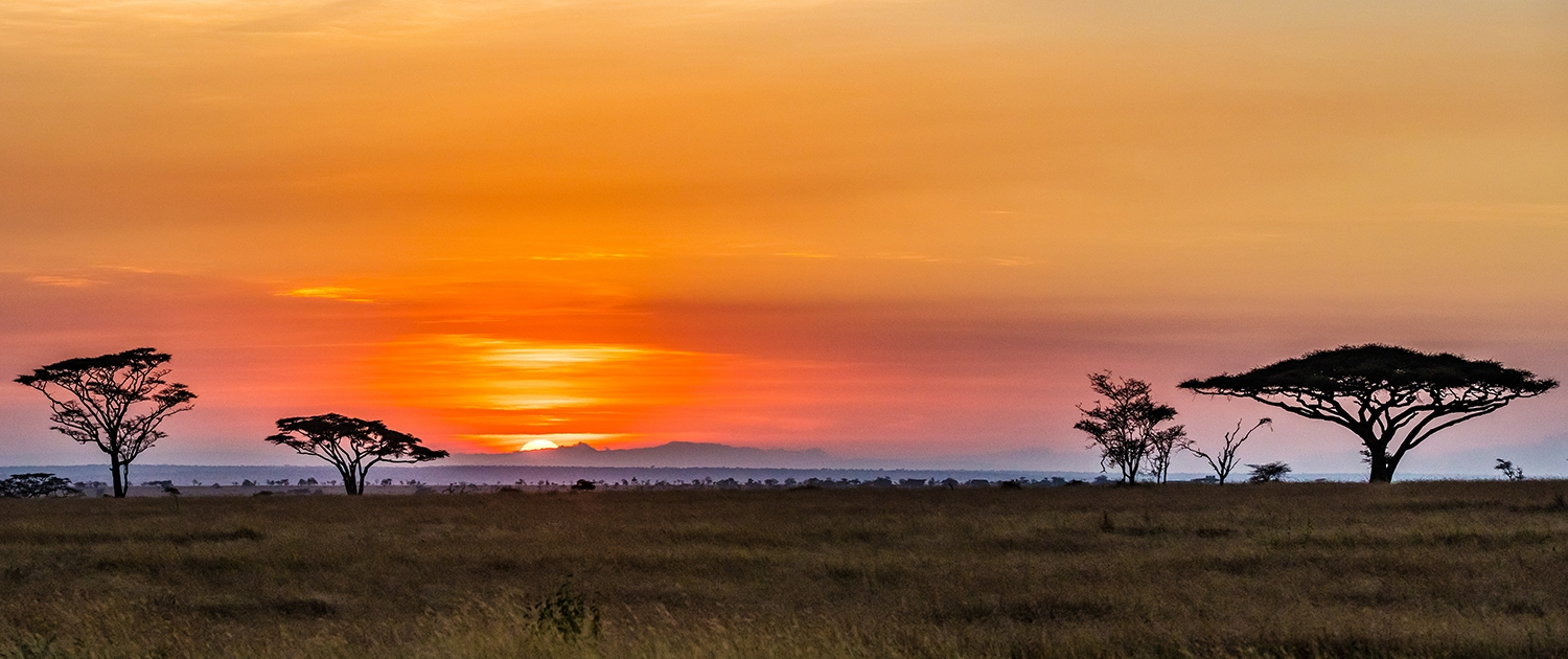 Serengeti sunset - photo Jeff Mikkelson