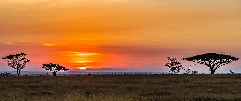 Serengeti sunset - photo Jeff Mikkelson
